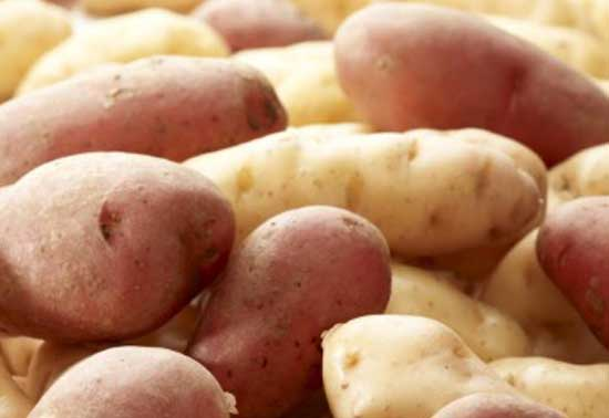 Video: Potato Types